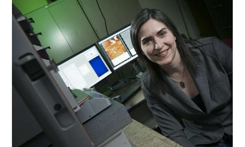 Animal, plant biology aids in improving electronic and energy conversion devices, Purdue discovers