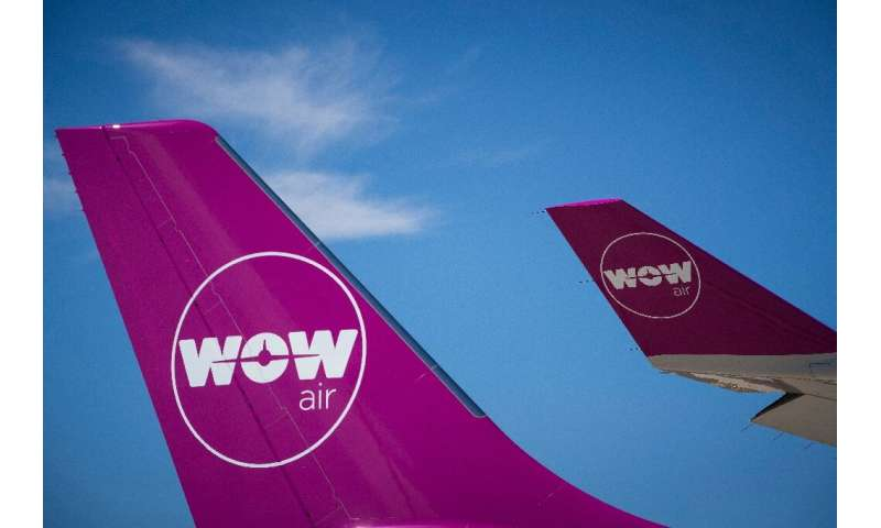 A number of airlines went bankrupt in 2019, including Iceland's WOW, as carriers came under greater pressure