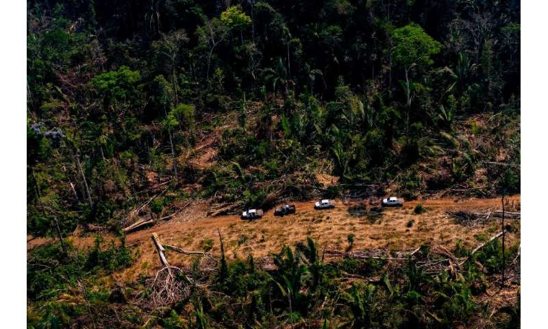 A picture released by the State of Mato Grosso in Brazil showing deforestation in the Amazon basin