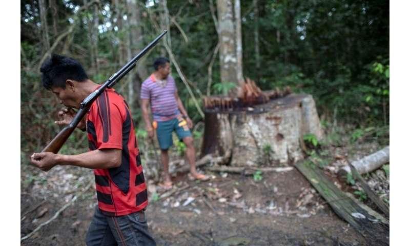 Arara indigenous chief Tatji Arara (L), 41, patrols his ancestral lands in northern Brazil, where illegal logging is a major pro