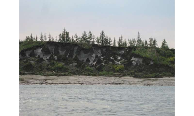Arctic rivers provide fingerprint of carbon release from thawing permafrost
