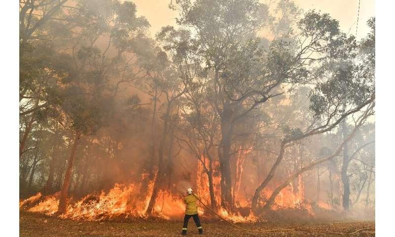 A record heatwave in Asustralia threatens to exacerbate an already unprecedented bushfire season