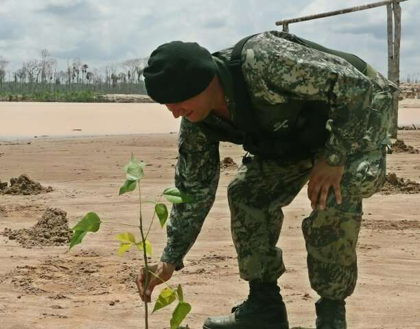 A soldier plants a sapling in the sand at a former illegal mining camp that will now be used as a military base to combat defore
