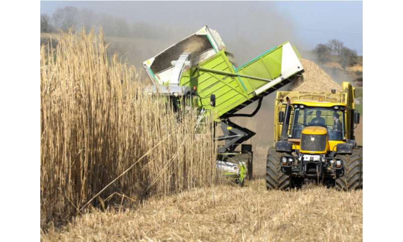 A step towards greater biomass uptake in Europe