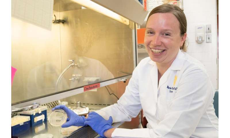 As whooping cough evolves, WVU researcher studies how to maintain vaccine's effectiveness