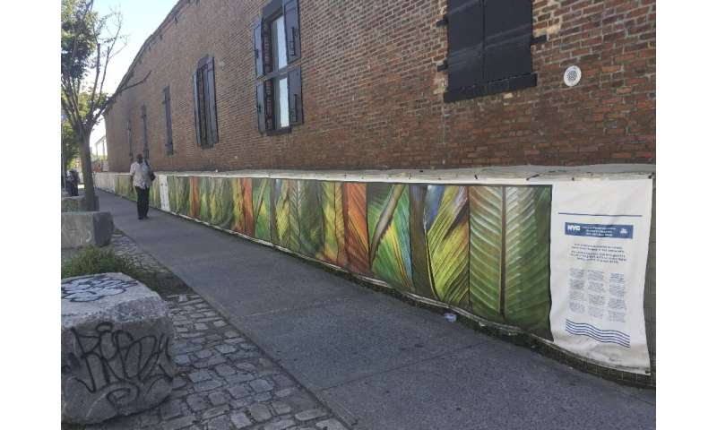 A temporary sandbag wall, seen in Red Hook, Brooklyn, was painted by an artist