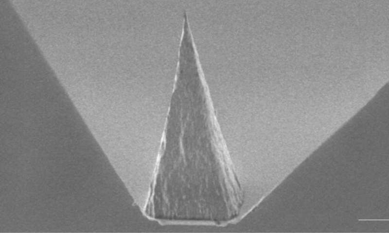 A tip for future nanoscale sensing