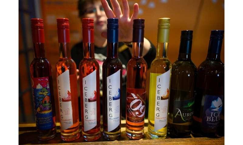 Auk Island Winery sells iceberg berry wines in the Newfoundland village of Twillingate