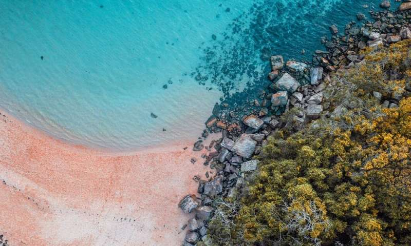Australia's pristine beaches have a poo problem