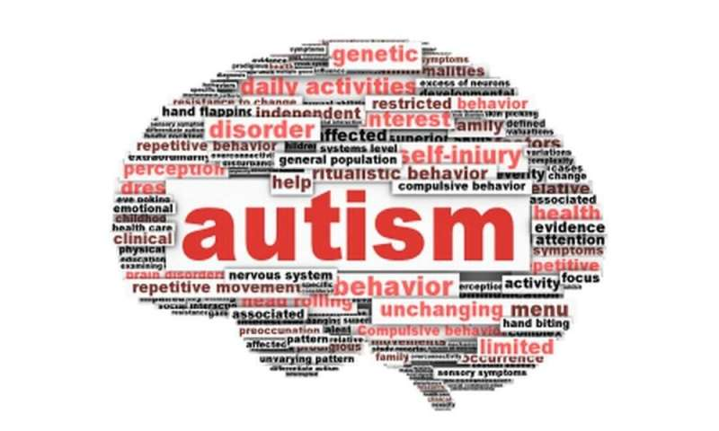Autism Risk Genes Also Linked To Higher >> Autism Largely Caused By Genetics Not Environment Study