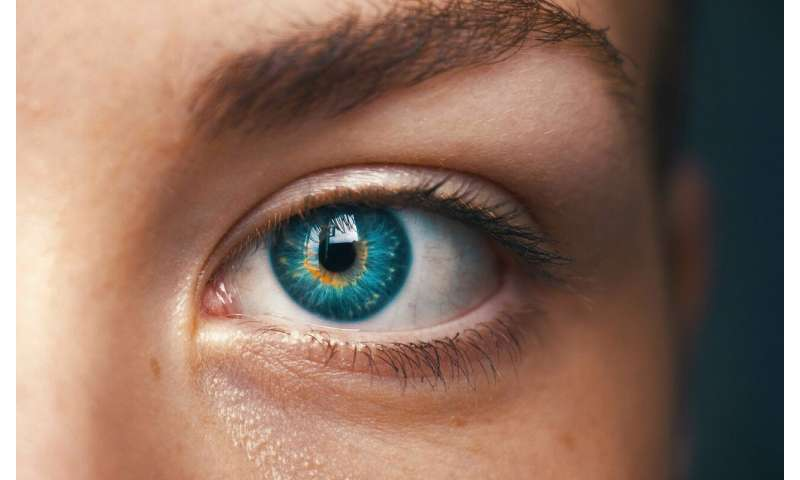 Automated detection of eye surface cancer