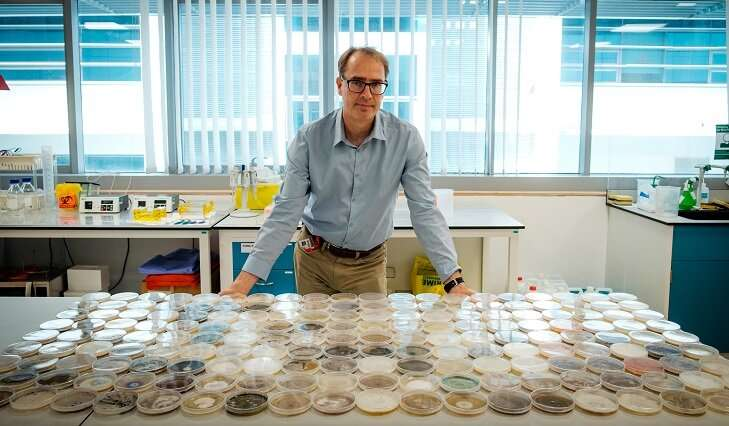 Bacteria and fungi show a precise daily rhythm in tropical air, finds study