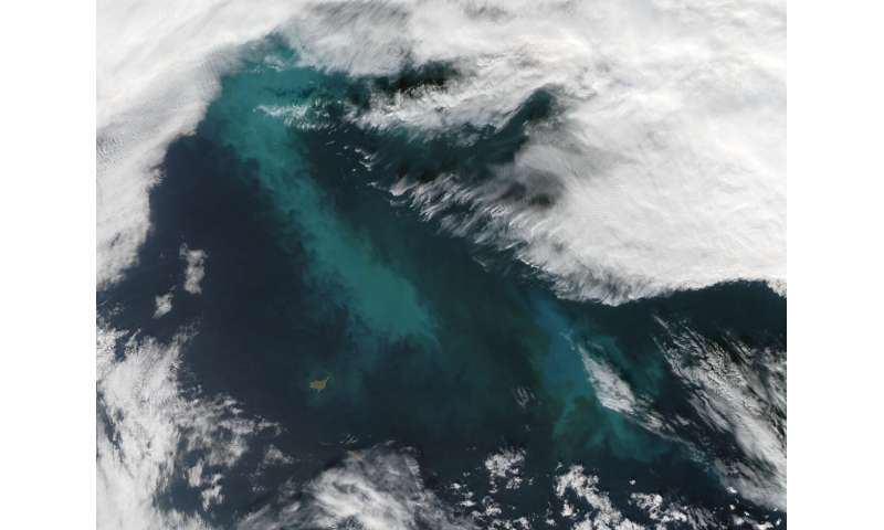 Bacteria feeding on Arctic algae blooms can seed clouds
