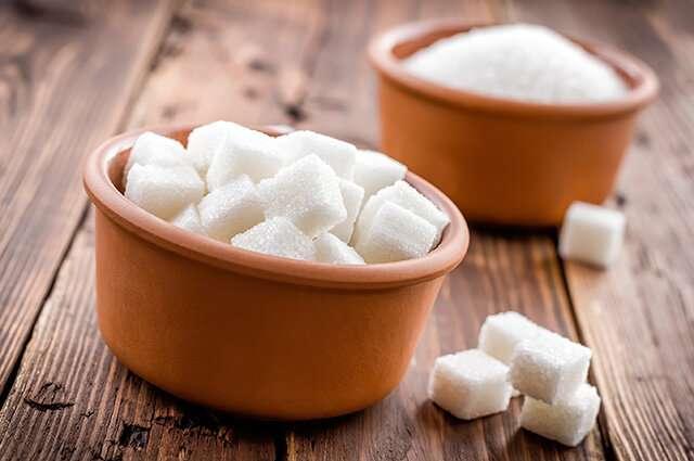 Bacteria help make low-calorie sugar
