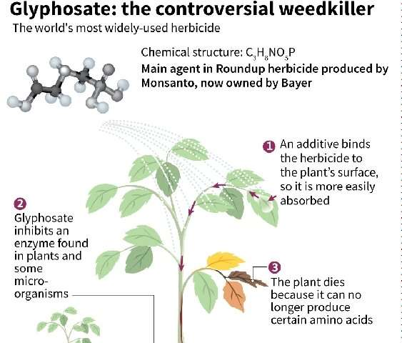 Bayer has said that more than 13,000 lawsuits related to its glyphosate-based weedkiller Roundup have been launched in the US