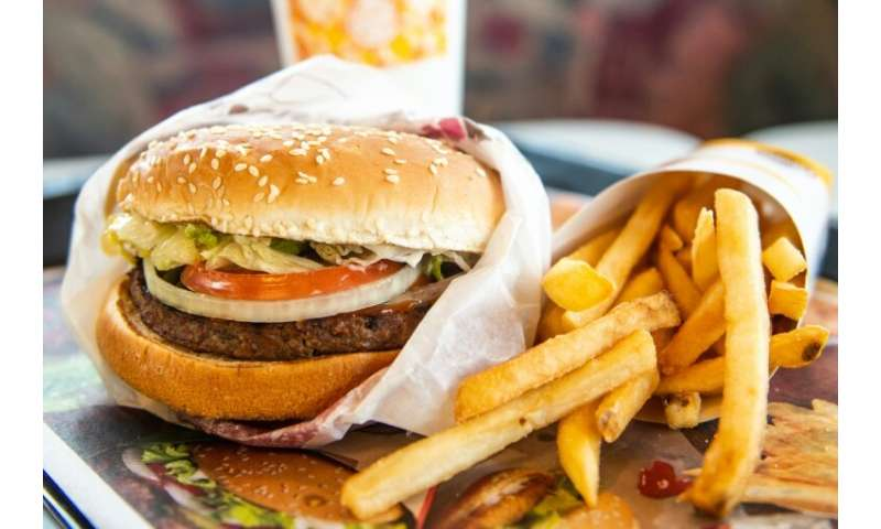 Burger King goes    vegan? The meatless Whopper is here