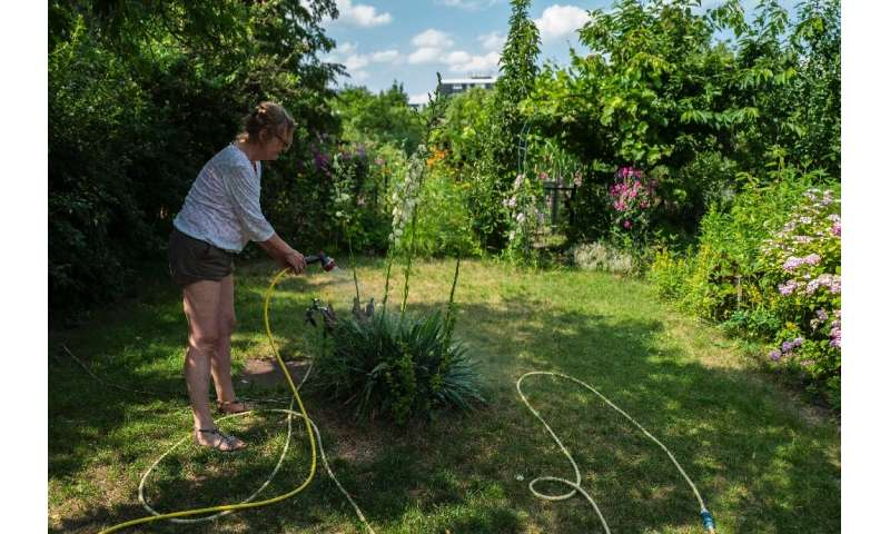 Berlin has 71,000 allotment plots spread over 890 settlements, representing three percent of the city's surface area