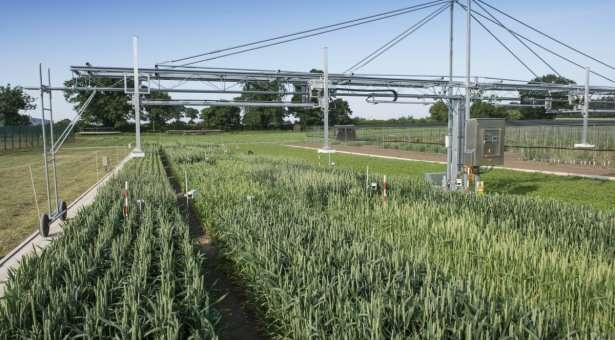 Big data harvesting tool will deliver smart farming