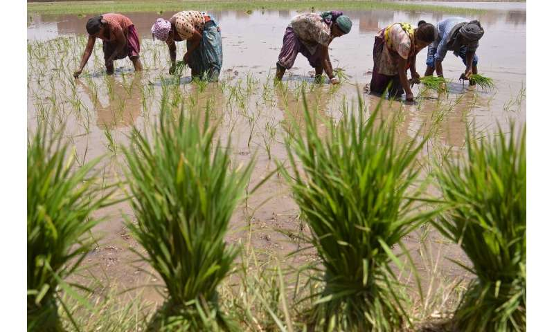 Billions of people rely on food grown using extracted groundwater