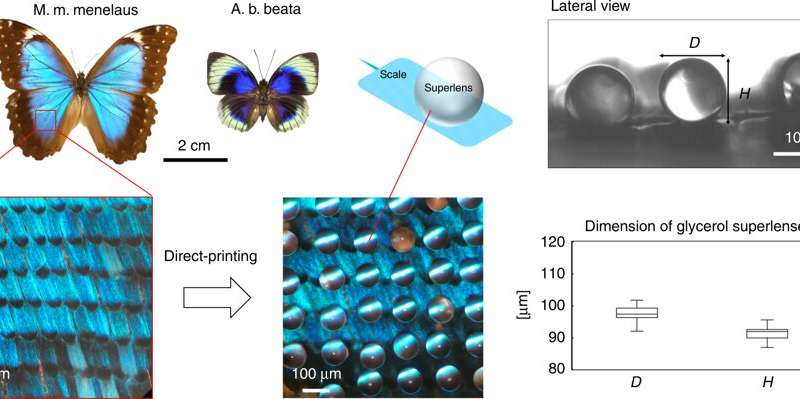 **Biophotonics: in situ printing liquid superlenses to image butterfly wings and nanobiostructures