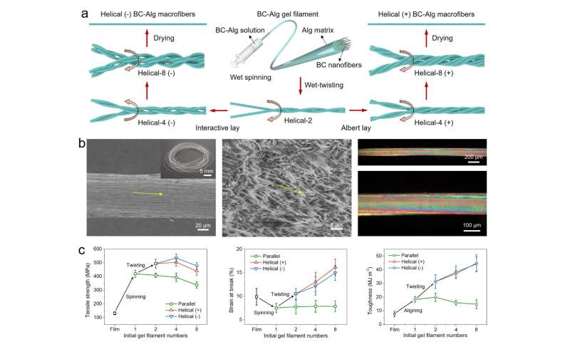 Biosynthesized fibers inspired strong and tough artificial nanocomposite fibers