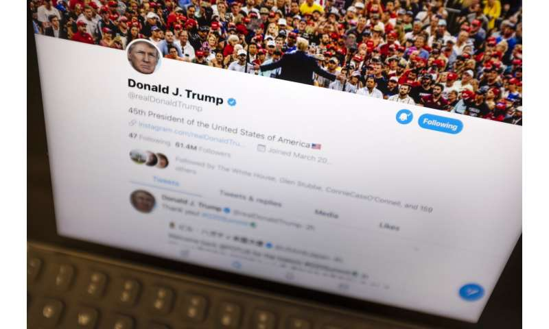 Bot or not? Mystery over anonymous user retweeted by Trump