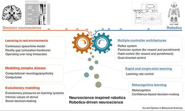Brain-inspired artificial intelligence in robots