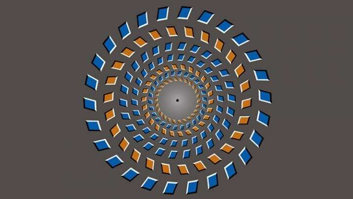 Brain represents optical illusion as delayed reality