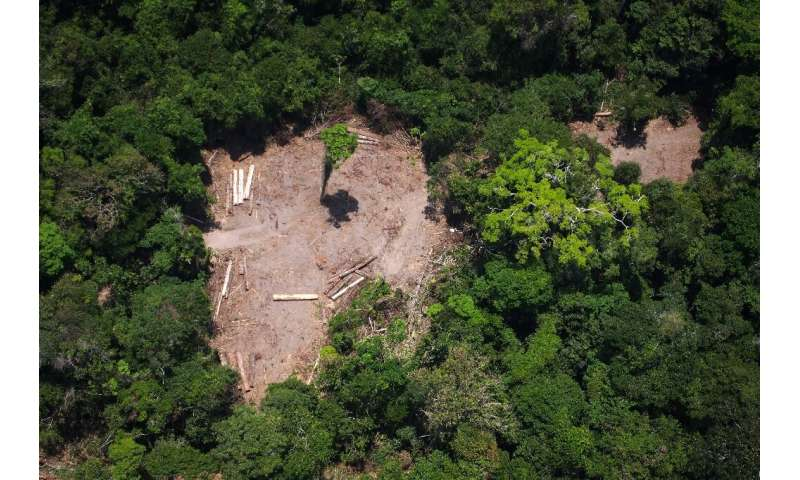 Brazilian President Jair Bolsonaro, a climate change sceptic, has accused the country's National Institute of Space Research of
