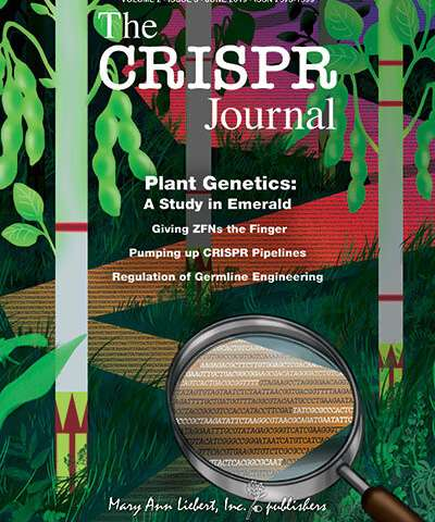 Broad Institute researchers use novel field-ready CRISPR platform to detect plant genes