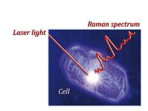 Cell chemistry illuminated by laser light