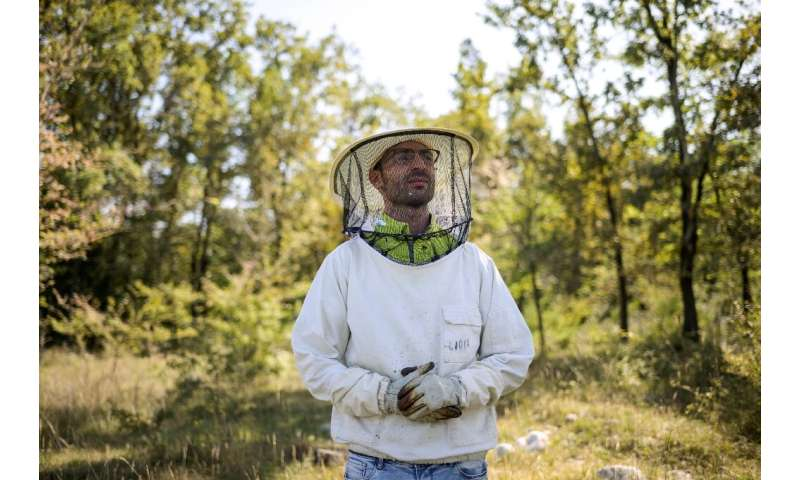 'Changes to the climate and exceptional rainfall create problems,' says bee technician Samuele Colotta