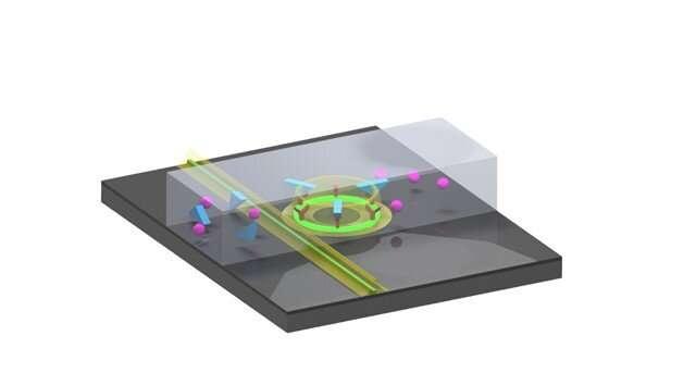 Chip-based optical sensor detects cancer biomarker in urine