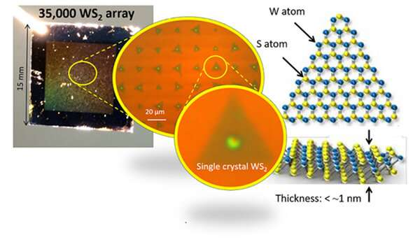 Clarification of a new synthesis mechanism of semiconductor atomic sheets