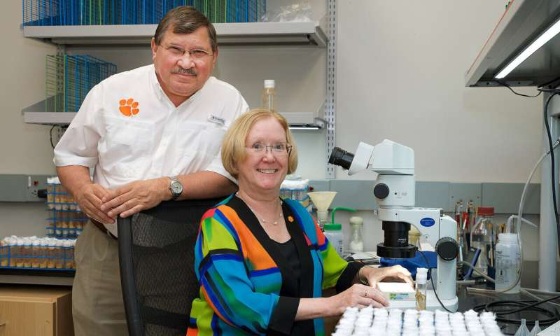 Clemson geneticists identify small molecules that are potential indicators for disease