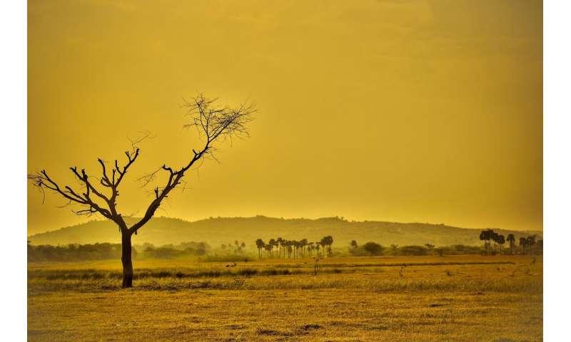 climate heat