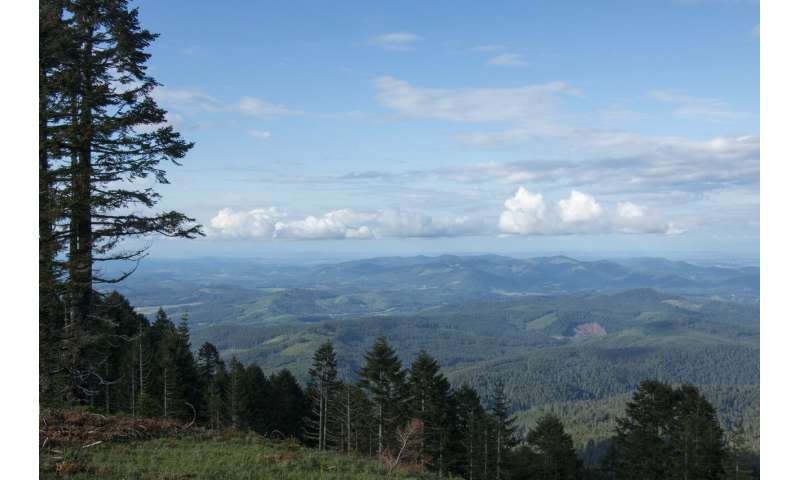 Climate modeling shows significant shifts in 21st century Pacific Northwest coastal forests