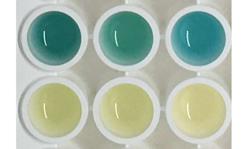 Colour-change urine test for cancer shows potential in mouse study