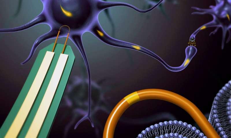 Combing nanowire noodles