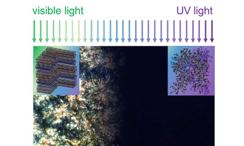 Controlling thermal conductivity of polymers with light