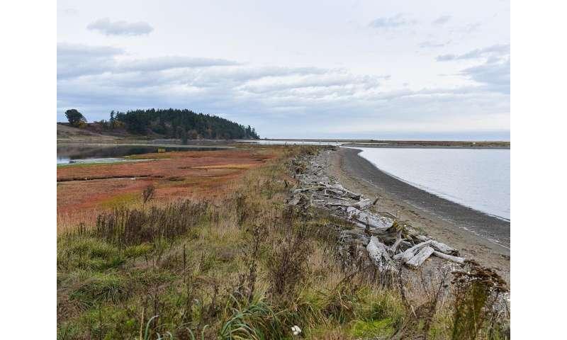 Converging on Coastal Science