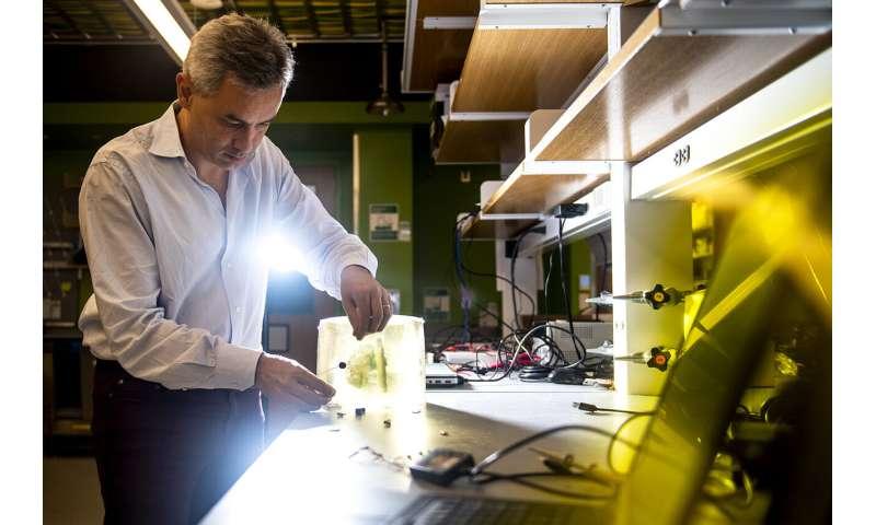 Could sound waves bring us smarter medical implants?