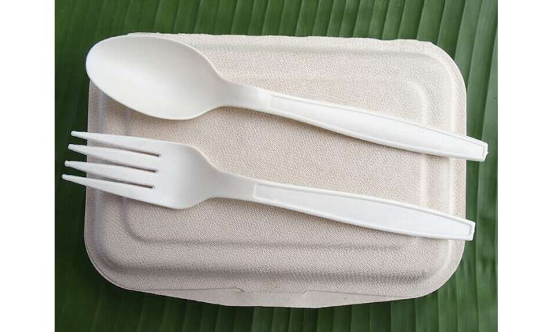 Creating sustainable bioplastics from electricity-eating microbes