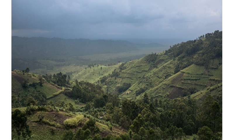 Crops border Virunga National Park in DR Congo, where the goverment faces a daunting challenge to protect the rainforest