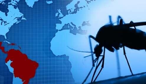 Dengue virus immunity may protect children from Zika symptoms