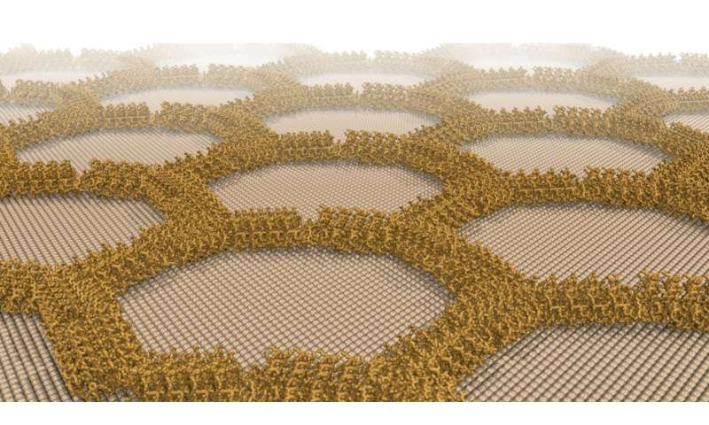 Designer proteins form wires and lattices on mineral surface