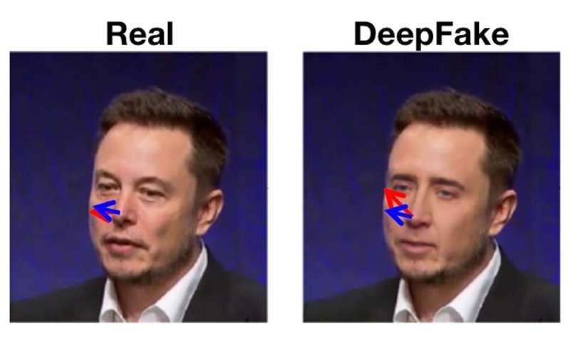 Detecting deepfakes by looking closely reveals a way to protect against them