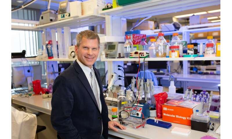 Developing next-generation biologic pacemakers