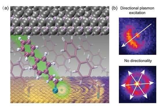 Directional plasmon excitation at molecular scales