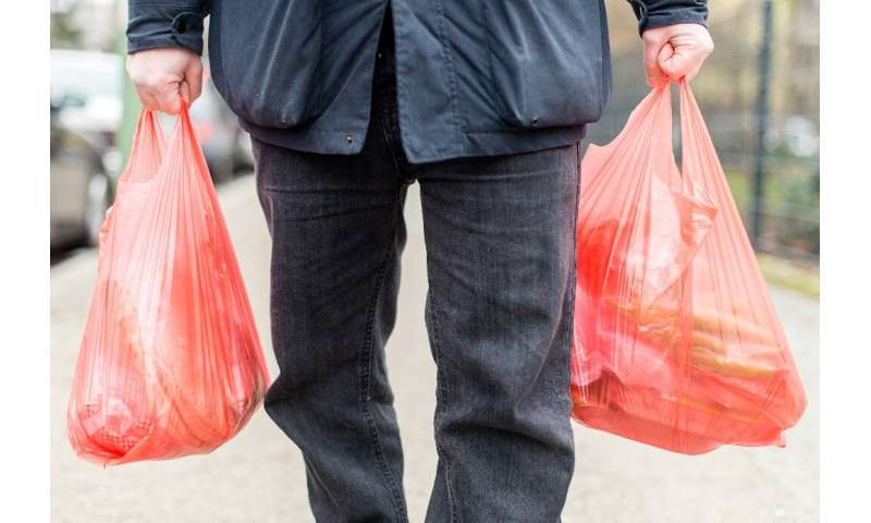 Disposible plastic shopping bags may disappear from German stores next year under a government proposal unveiled Friday